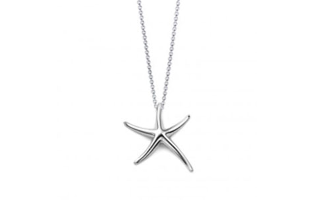 Edmon Starfish 925 Sterling Silver Plated Necklace - $17 with FREE Shipping!